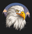 eagle head with american flag pattern vector image vector image