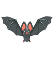 isolated cartoon bat flying vector image vector image