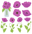 Purple Poppies vector image