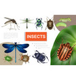 realistic insects colorful composition vector image vector image