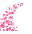 realistic rose cherry sakura petal wave vector image vector image