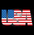 usa flag text icon vector image vector image