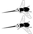 cartoon mosquito vector image vector image