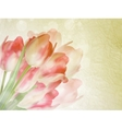 Old paper background with beautiful tulips EPS 10 vector image vector image