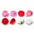 set peony buds on a transparent background3d vector image
