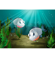 Two fishes with sharp teeth under the sea vector image vector image