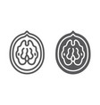 walnut line and glyph icon plant and food nut vector image vector image