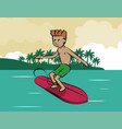 water sports infographic vector image vector image