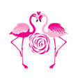 an enamored pink flamingo vector image vector image