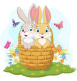 couple rabbit cartoon in basket vector image vector image