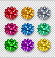 elegant colorful gift bows from ribbon vector image