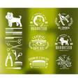 Hairdresser for dog Badges and design elements vector image vector image