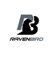 raven and eagle simple logo designs modern vector image