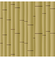 Abstract bamboo background EPS10 vector image vector image