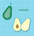 creative avocado fruits and avocado half vector image