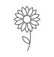 flower natural petal floral decoration vector image