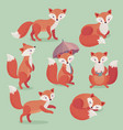 fox set hand drawn style vector image vector image