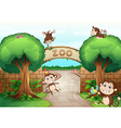 Monkeys in zoo vector image vector image