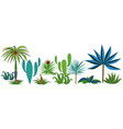Set of different tropical plants