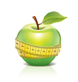 object green apple tape vector image