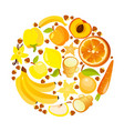 circle shape of yellow and vector image vector image