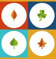 flat icon leaf set of alder foliage leaf and vector image vector image