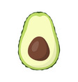 half avocado isolated on white background vector image vector image