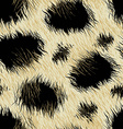 Leopard spots fur in a seamless pattern vector image