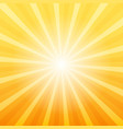 orange sunray background vector image vector image