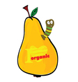 pear with worm color vector image vector image