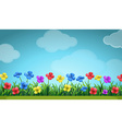 Scene with colorful flowers in the field vector image vector image
