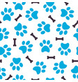 seamless pattern of blue animal paws with bones vector image vector image