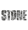 Stone sign vector image