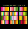 summer colors gradients collection for any kind of vector image vector image