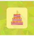 Birthday cake sign icon on polygonal triangle vector image