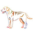 colorful decorative standing portrait of labrador vector image