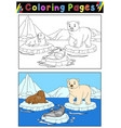 arctic animals for coloring book vector image