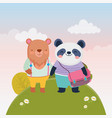 back to school education bear and panda vector image vector image