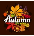 Background with autumn leaves and plants Design vector image vector image