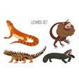 cartoon colorful lizards vector image