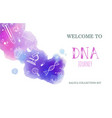 ethnicity and genealogy dna genetic test vector image vector image