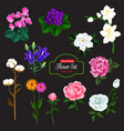 flower icon of garden and house flowering plant vector image