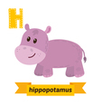 Hippopotamus H letter Cute children animal vector image vector image