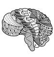 Human Brain doodle vector image