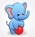 infant blue elephant playing with red ball vector image vector image