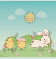 little chicks with rabbit easter characters vector image