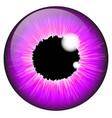 purple iris eye realistic set design isolated on vector image vector image