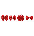 set of isolated bow knots for gift decoration vector image