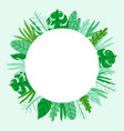 circle jungle nature frame vector image vector image