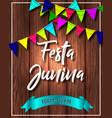 festa junina t vector image vector image